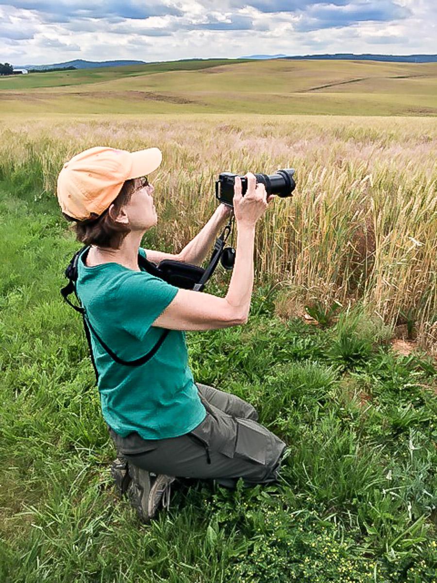 MacLeod Photography. McLeod Photography. Gail MacLeod Lexington VA