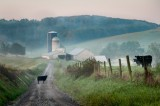 Brownsburg Farm Country
