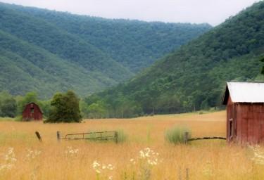 Virginia Farm Country #2