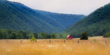 Virginia Farm Country #1
