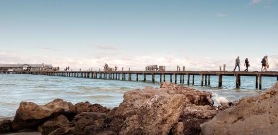 pier study (2 of 5)